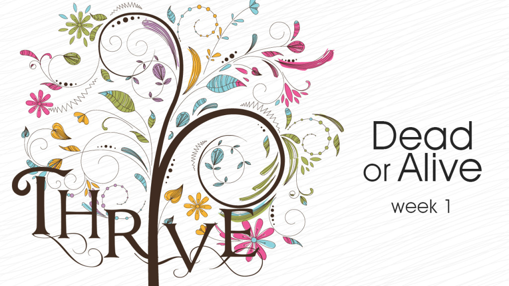 Thrive-Week1 1280x720