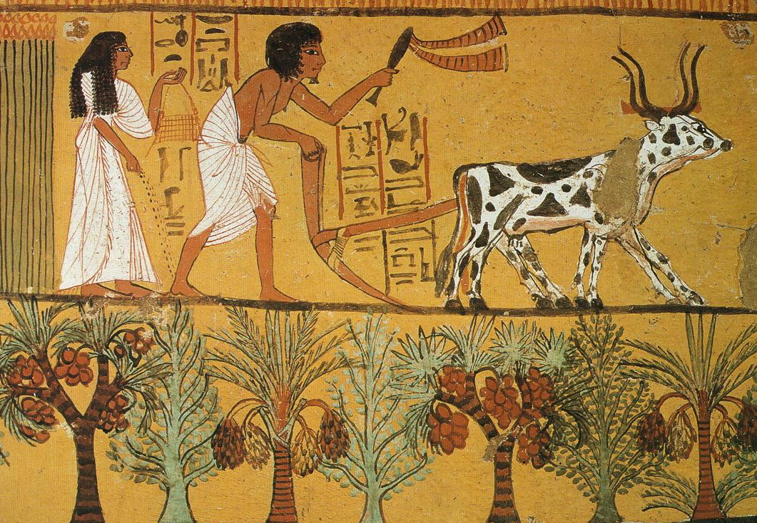 1061 x 734 jpeg 682kB, Uncategorized Ancient Egyptian Jewelry Wiki ...
