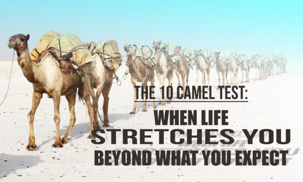 JB Thursblog-The 10 Camel Test-sample 03