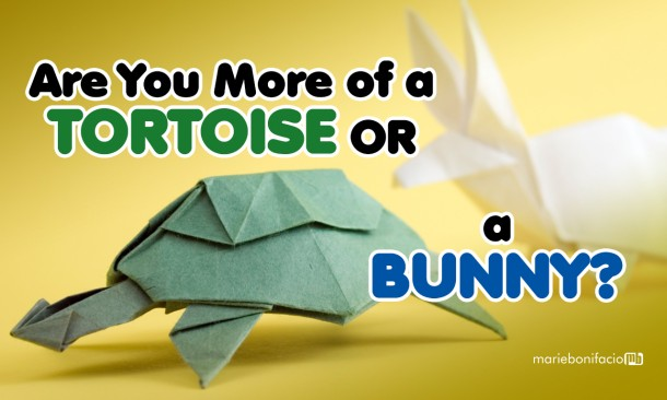 JB Thursblog-Are You More of A Tortoise 1280x768