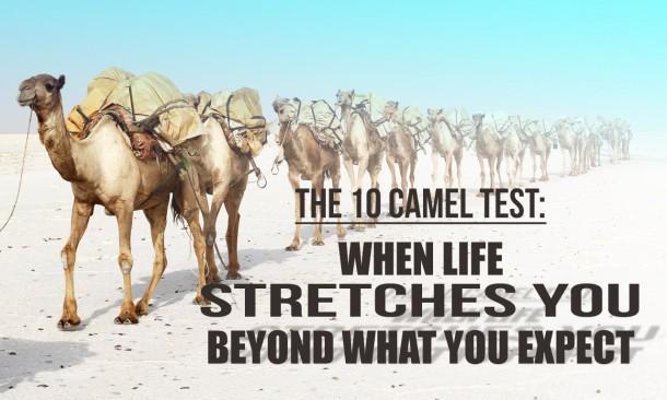 JB Thursblog-The 10 Camel Test-sample 03